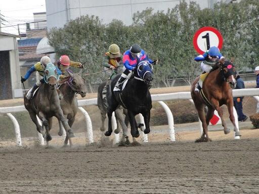 地方競馬のイメージ