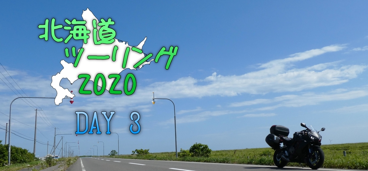 f:id:A_moyashi:20210117120408j:plain