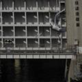 ユリカモメb 茅場町 日本橋水門