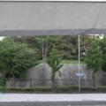 名古屋 街路樹