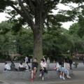 上野 公園