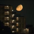 月とマンション