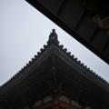 京都 六波羅蜜寺 大雨