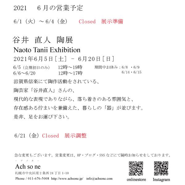 f:id:Ach-so-ne:20210531151527j:plain
