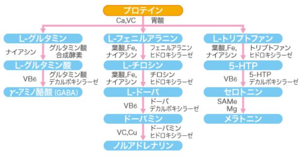 f:id:Agency-of-Yoshi:20210302232326p:plain