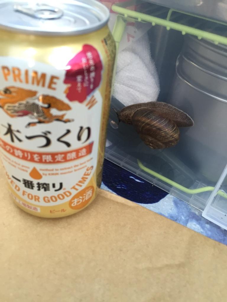 f:id:AkasakaIchiro:20161031001149j:image