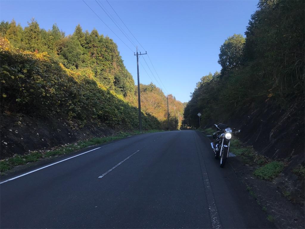 f:id:AkasakaIchiro:20181111230705j:image