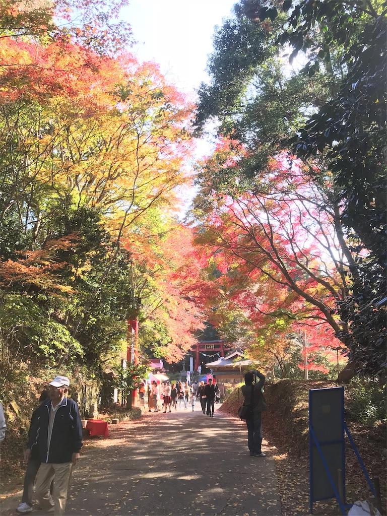 f:id:AkasakaIchiro:20181111230727j:image