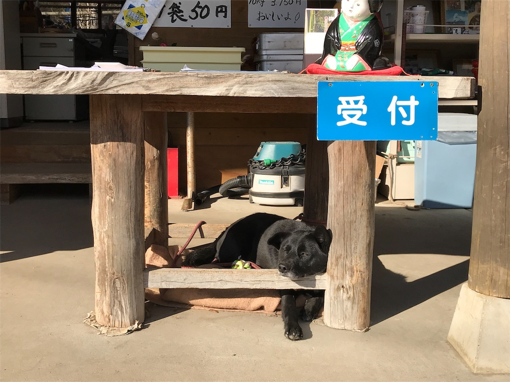 f:id:AkasakaIchiro:20190104200109j:image