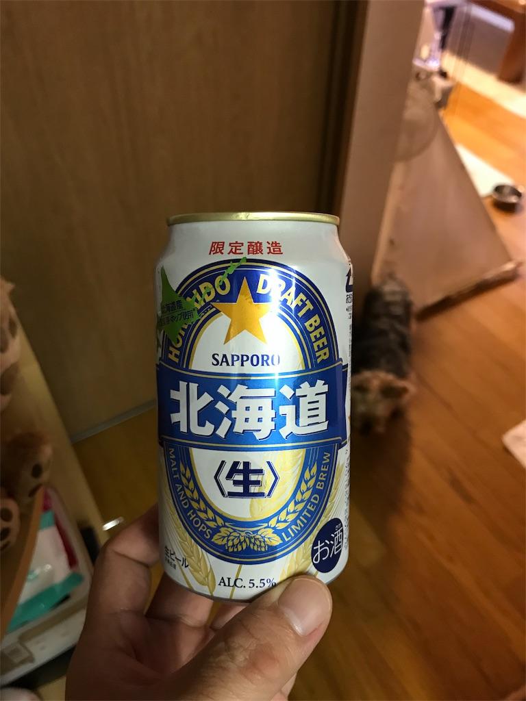 f:id:AkasakaIchiro:20190616225559j:image