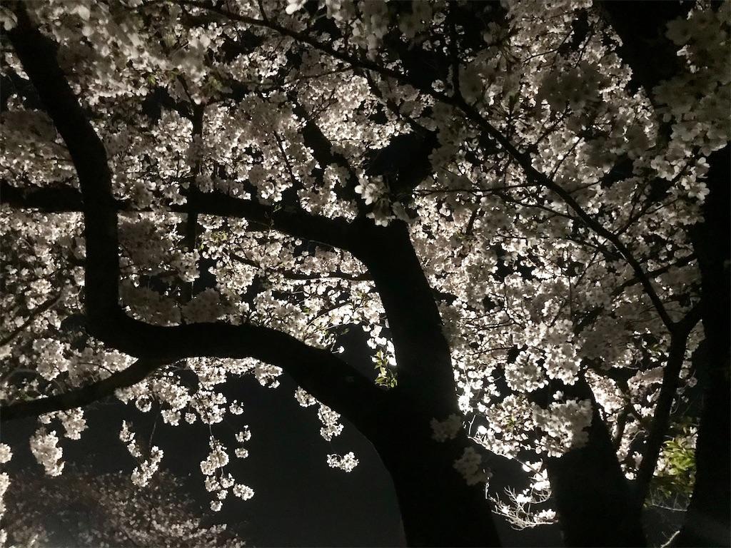 f:id:AkasakaIchiro:20210328165813j:image