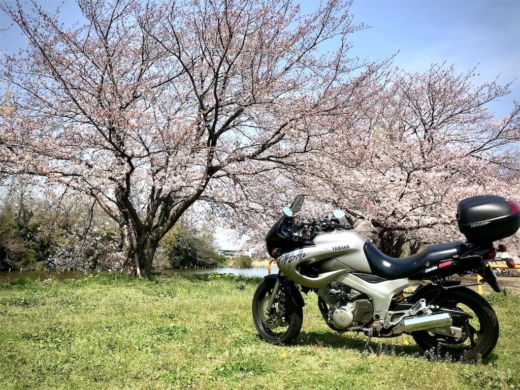 f:id:AkasakaIchiro:20210328165905j:image