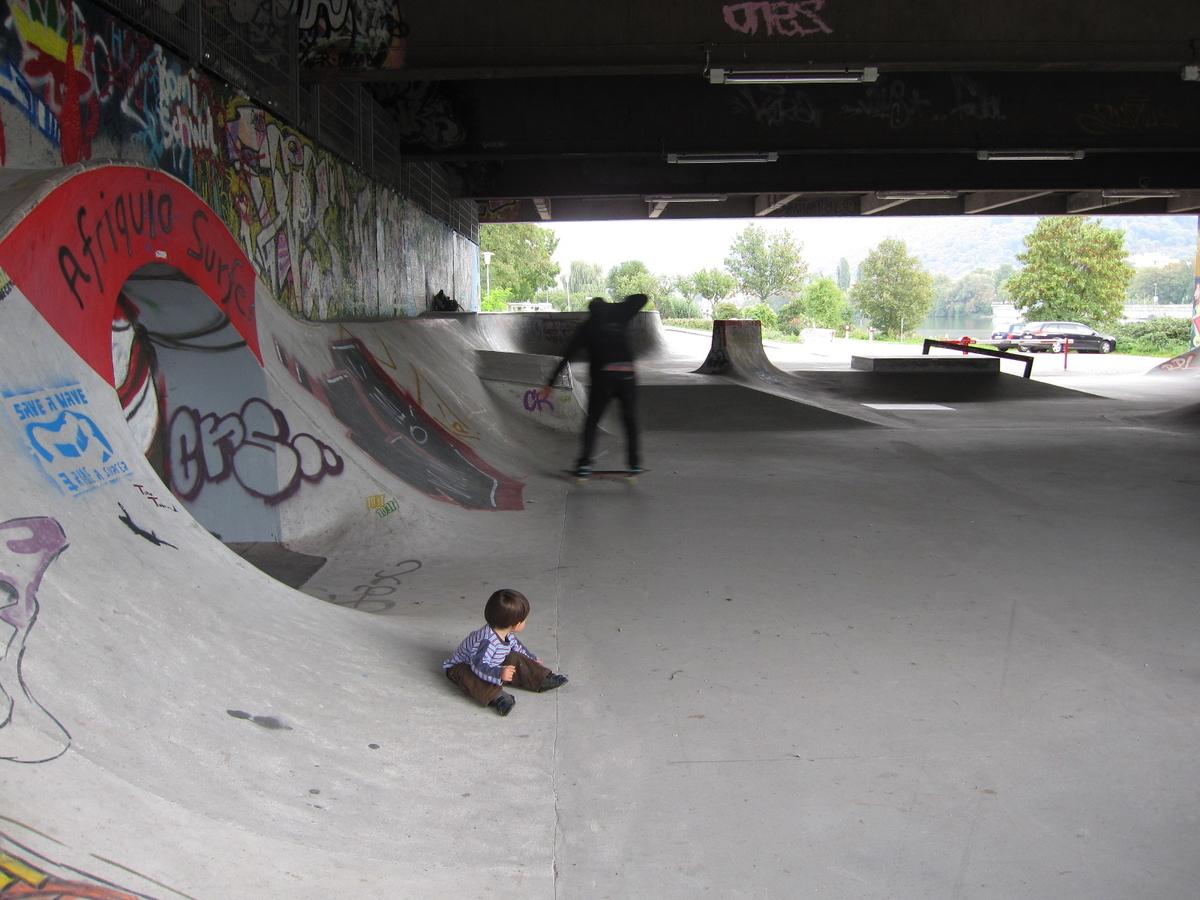 ハイデルベルク ネッカーヴィーセ スケートパーク