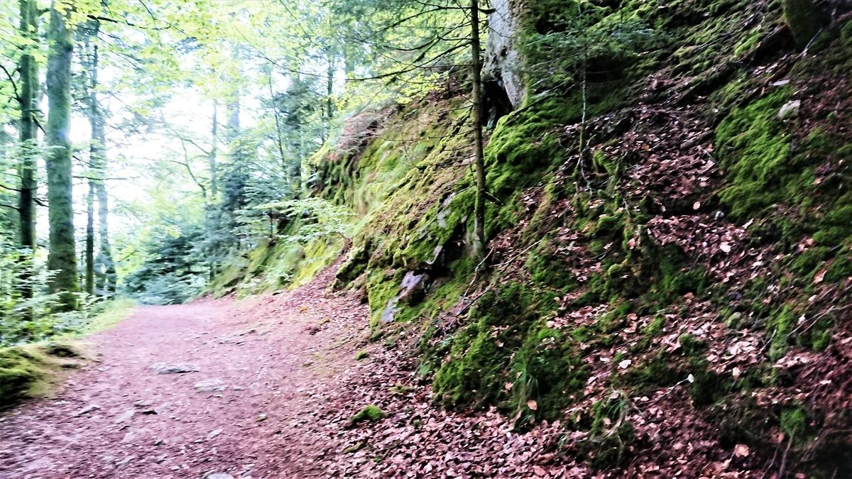 Schwarzwald Allerheiligen-Wasserfälle SagenWeg