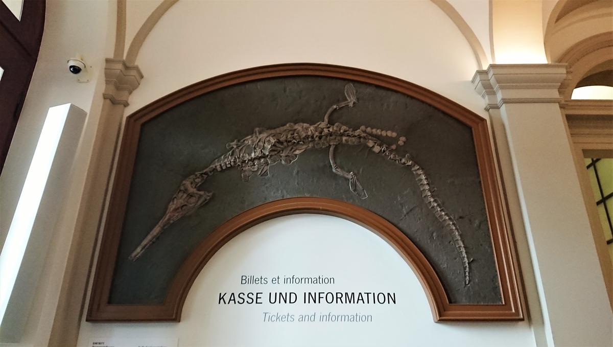 Staatliches Museum für Naturkunde Karlsruhe 州立自然博物館 カールスルーエ