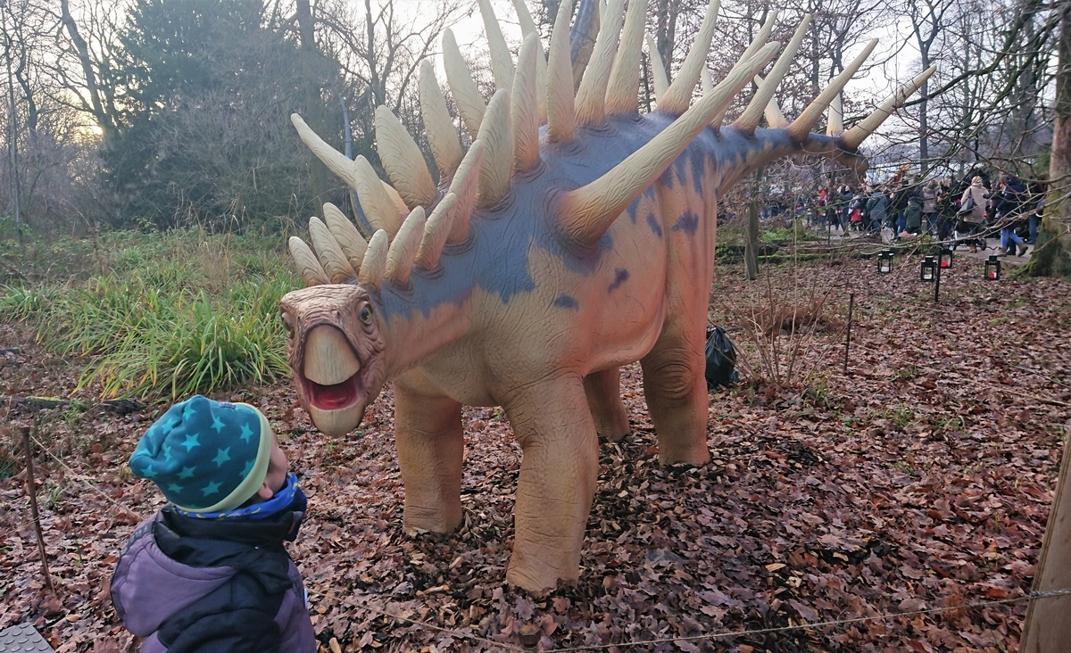 Dino wald PLWM