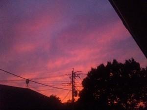 f:id:AkikoHORII:20090921005242j:image