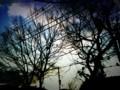 2010 Winter Sky(iPhone/MoreLomo)