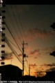 2010 Winter Sunset(iPhone/RETRO CAMERA)