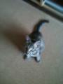 猫じゃらしを狙うフミコ嬢