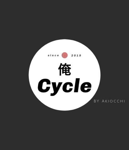 f:id:Akiocchi:20191002232438j:plain