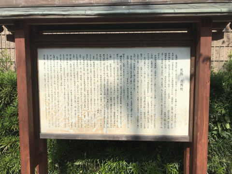 f:id:Akiocchi:20191030204634j:plain