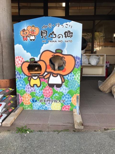 f:id:Akiocchi:20191106194906j:plain