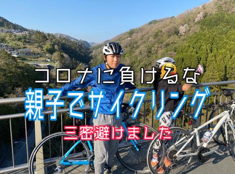 f:id:Akiocchi:20200509183608j:plain