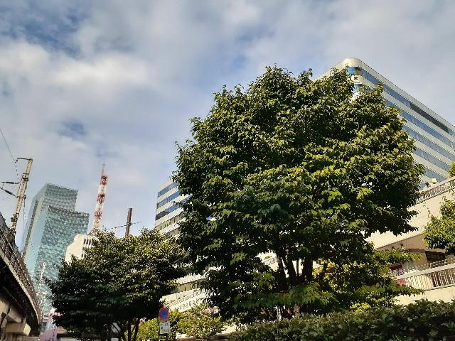 f:id:Akiramenai:20190811163339j:image