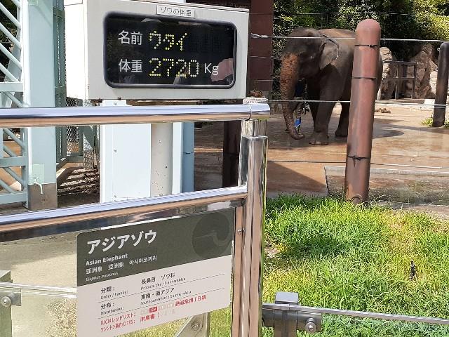 f:id:Akiramenai:20190812140026j:image