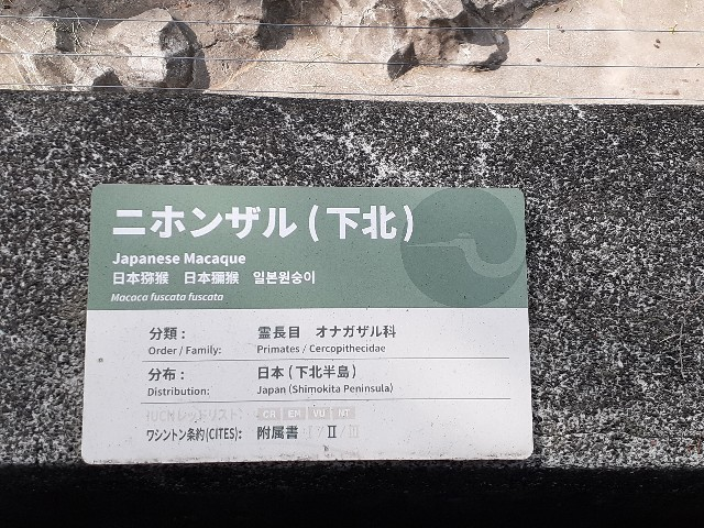 f:id:Akiramenai:20190812145510j:image