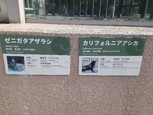 f:id:Akiramenai:20190812151143j:image