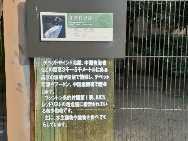 f:id:Akiramenai:20190812151756j:image