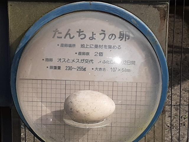 f:id:Akiramenai:20190812152653j:image