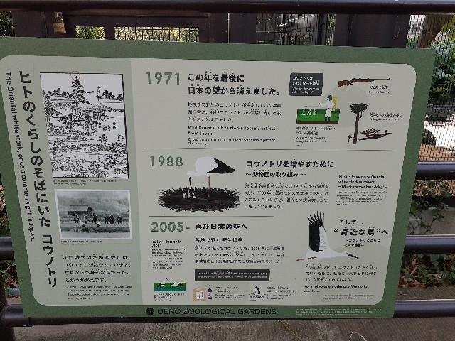 f:id:Akiramenai:20190812170703j:image