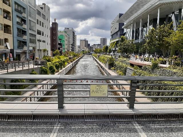 f:id:Akiramenai:20190813132945j:image