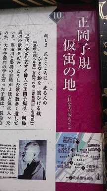 f:id:AkisaMiyona:20190320165418j:plain