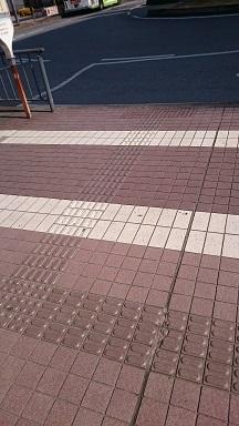f:id:AkisaMiyona:20190326131934j:plain