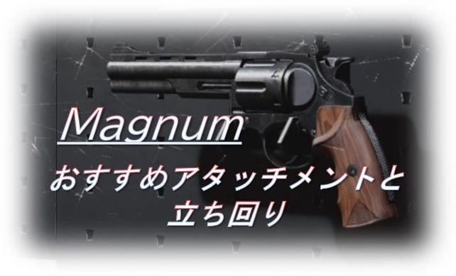 f:id:AkiyoshiBlog:20210417230902j:plain