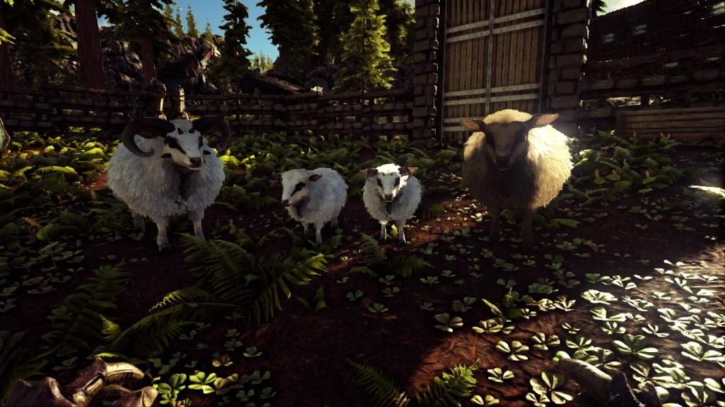 ラグナロク 羊 Ark