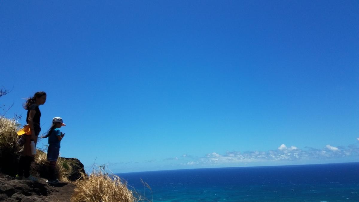 f:id:AlohaFromHawaii:20200601141322j:plain