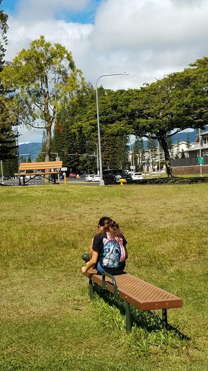 f:id:AlohaFromHawaii:20200604161548j:plain