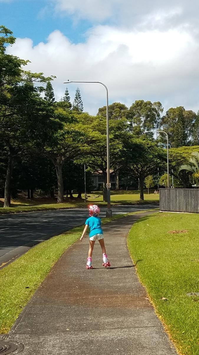 f:id:AlohaFromHawaii:20200608155936j:plain