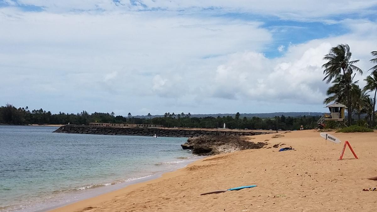 f:id:AlohaFromHawaii:20200609172054j:plain