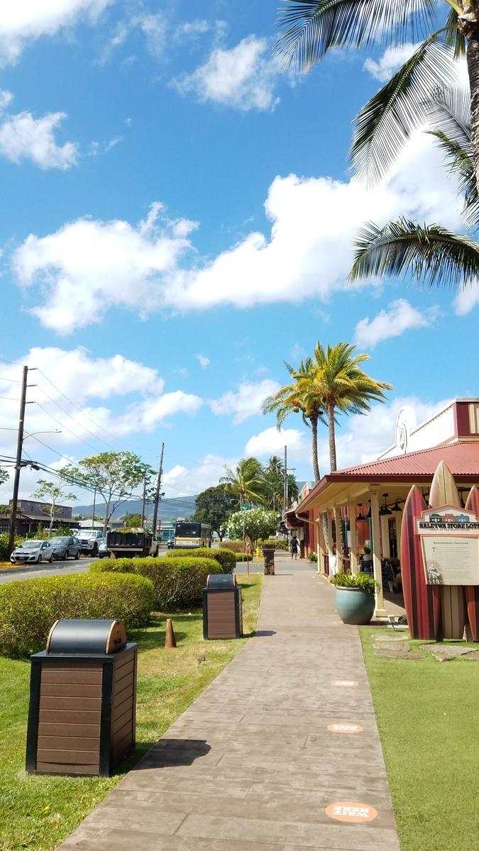 f:id:AlohaFromHawaii:20200614081708j:plain