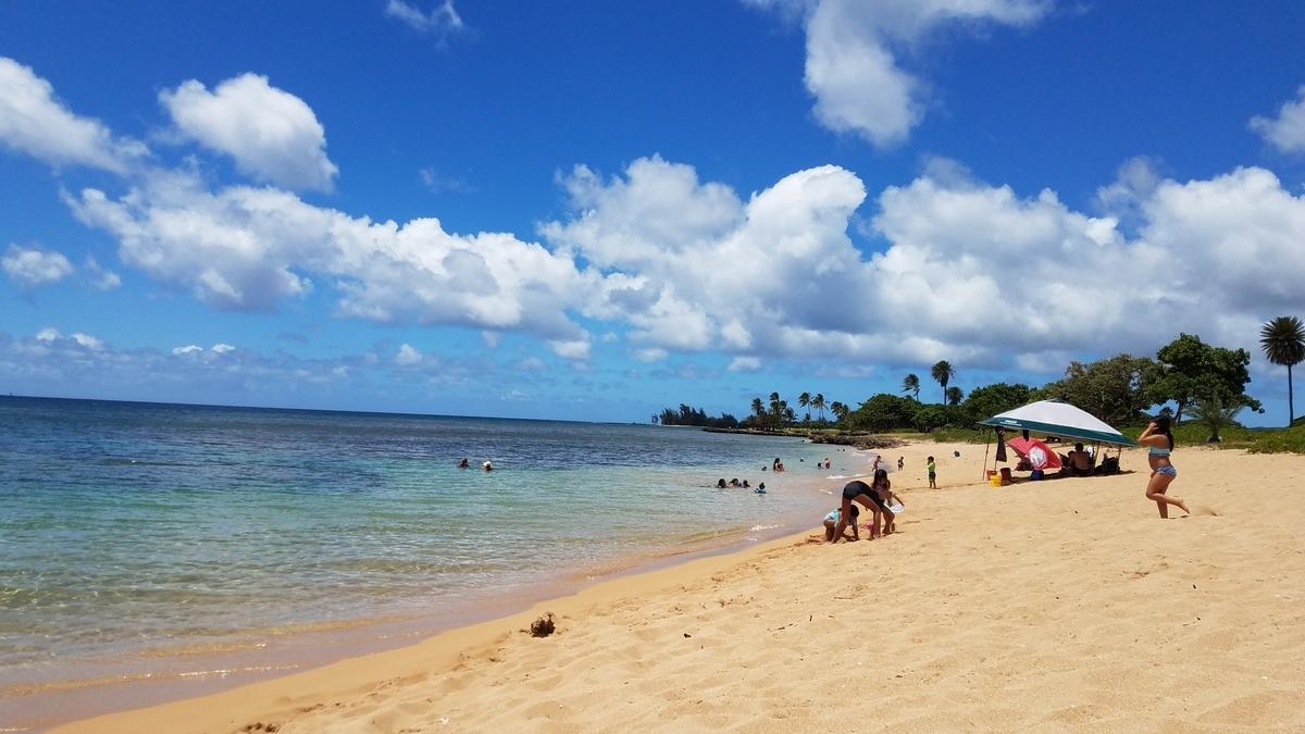 f:id:AlohaFromHawaii:20200616171348j:plain