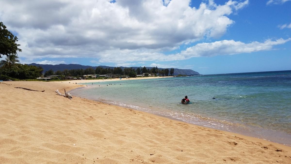 f:id:AlohaFromHawaii:20200616171508j:plain