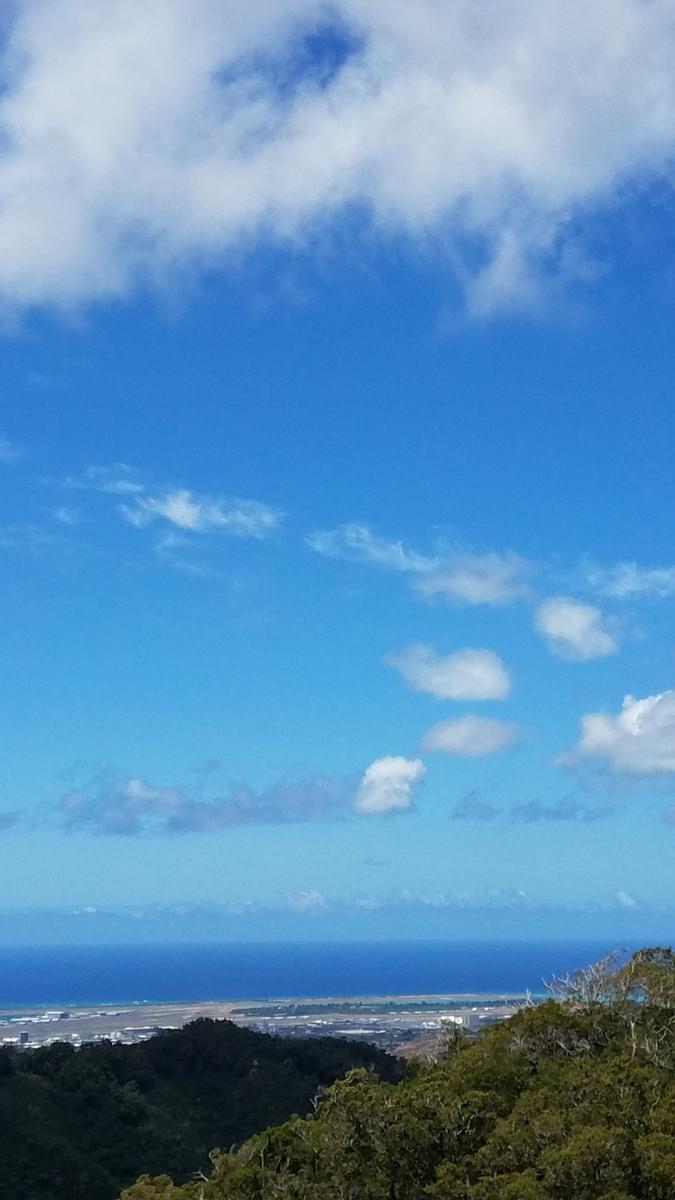 f:id:AlohaFromHawaii:20200618194258j:plain