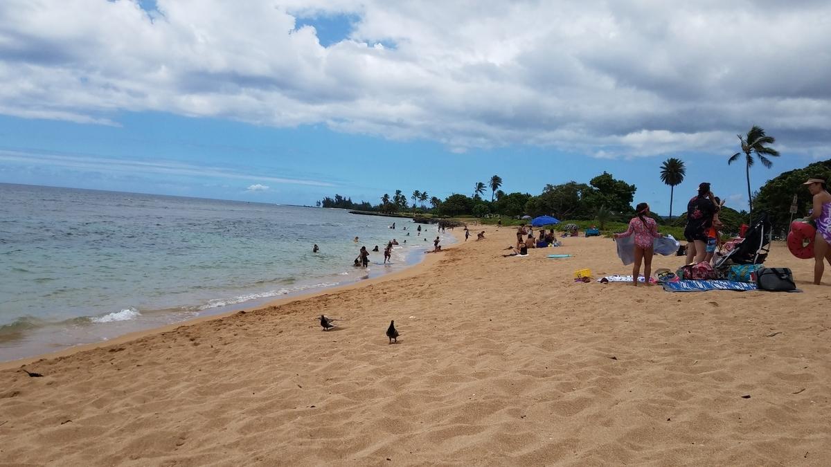 f:id:AlohaFromHawaii:20200701021302j:plain