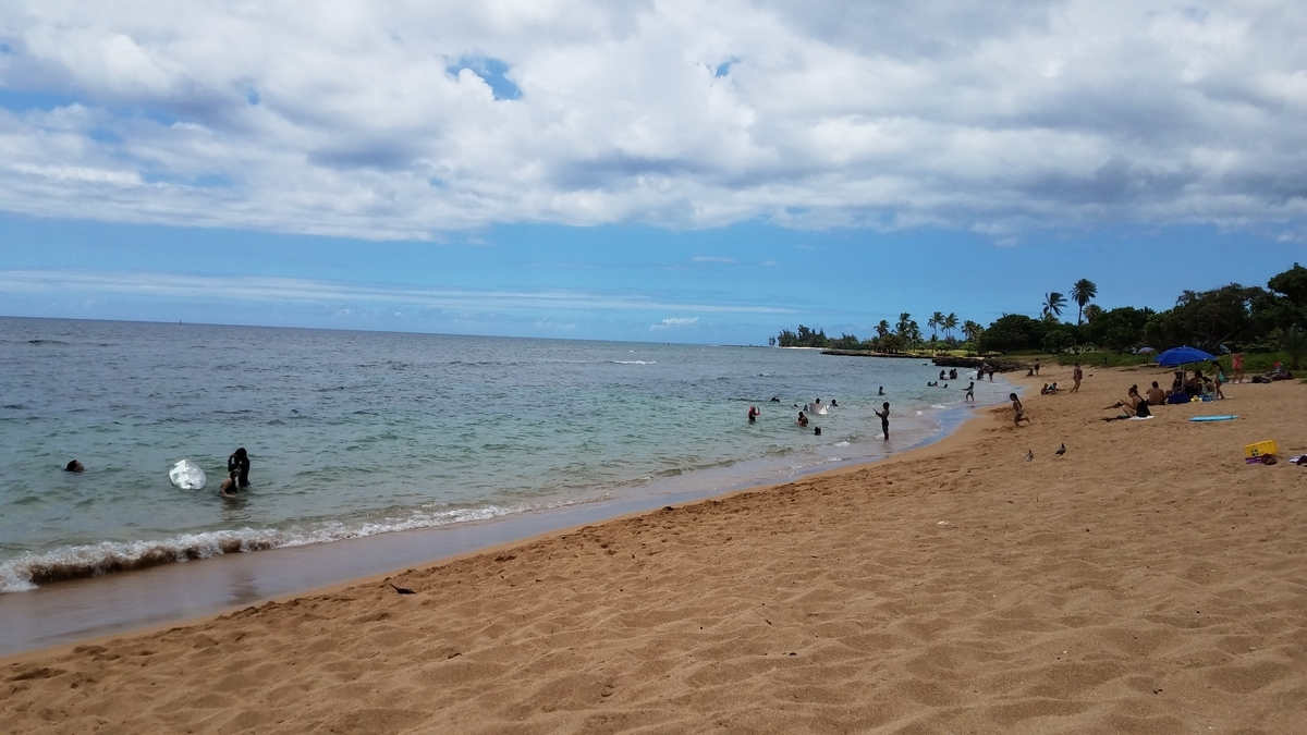 f:id:AlohaFromHawaii:20200701021323j:plain